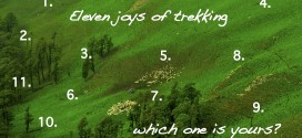11 joys of trekking in the Himalays